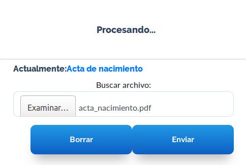 procesando_actualizacion